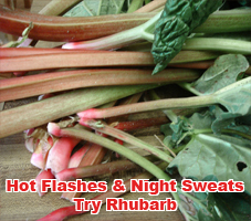 You Ve Heard Of Rhubarb Pie Jelly Maybe Even Crisp But To Stamp Out Hot Flashes And Night Sweats No Not By Blending It Into A