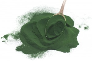 What's So Special About Chlorella?Professional Supplement
