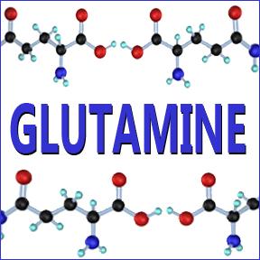 glutamine1