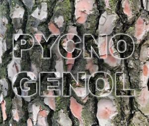 Pycnogenol1