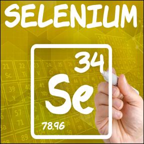 Selenium2