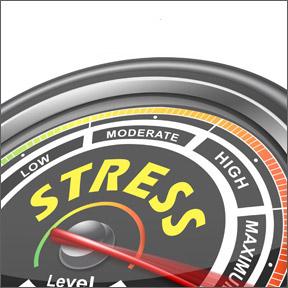 StressCravings