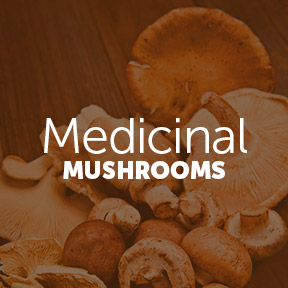 MedicinalMushrooms