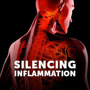 SilencingInflammation